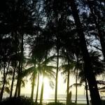 PHUKET : VLOG EN THAILANDE