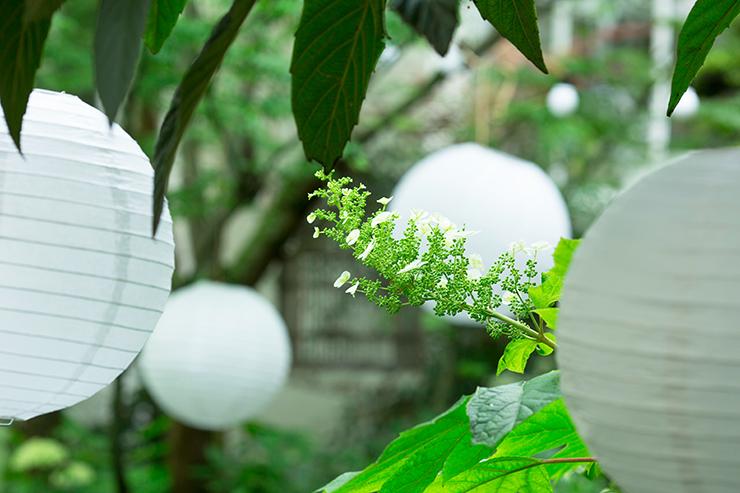 garden party vloggist safia vendome youmakefashion la revue de kenza
