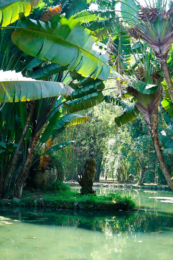 rio de janeiro bonne adresse voyage blog conseil jardin botanique 2