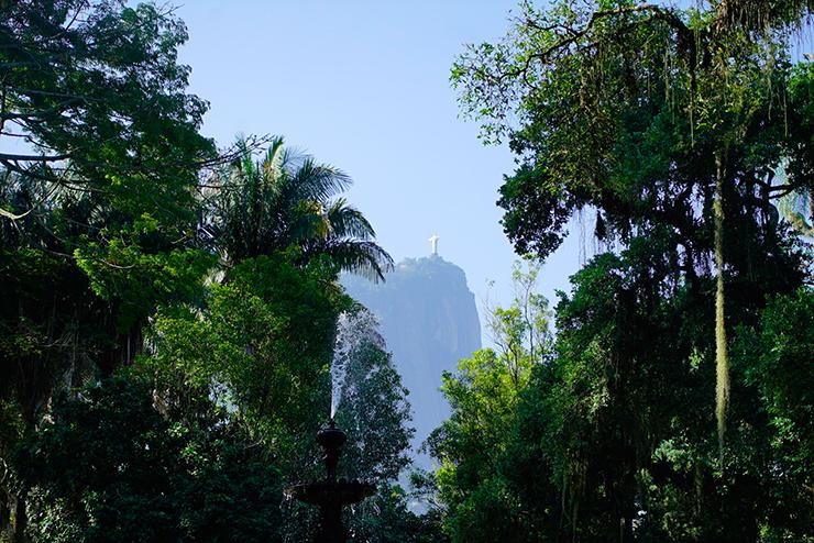 rio de janeiro bonne adresse voyage blog conseil jardin botanique 7
