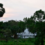 SRI LANKA : VLOG AU ROYAUME DES SINGES avec DISNEY NATURE