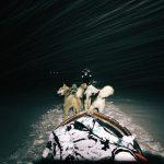 Longyearbyen (Svalbard en Norvège) : chiens de traîneau et aurores boréales