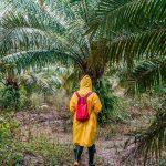 SAC À DOS : comment s'habiller en AMAZONIE